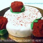 Saint Valentine´s brownie fondant red velvet cake y despedida de HEMC#51