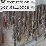 Matanzas 2ª parte | De excursión por Mallorca