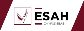 esahweb
