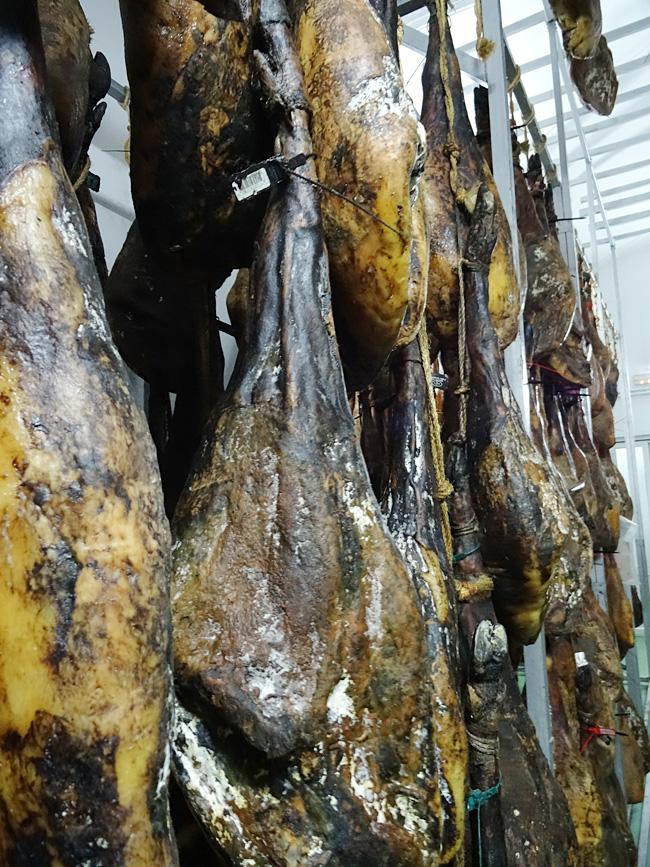 Secadero de Jamón ibérico en Jerez de los Caballeros