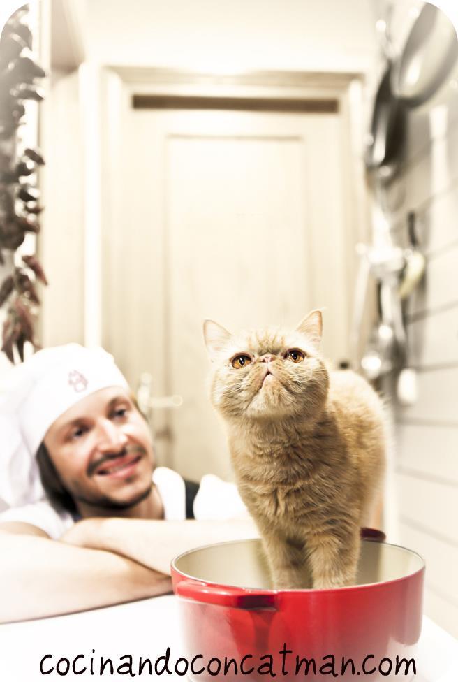 Curso de cocinero profesional esah cocinando con catman for Curso cocina profesional pdf